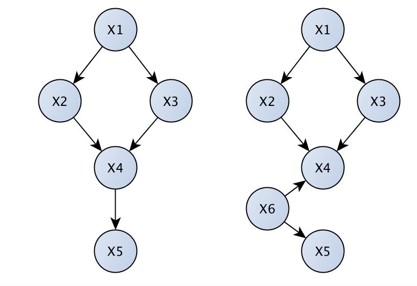 Causal graphs